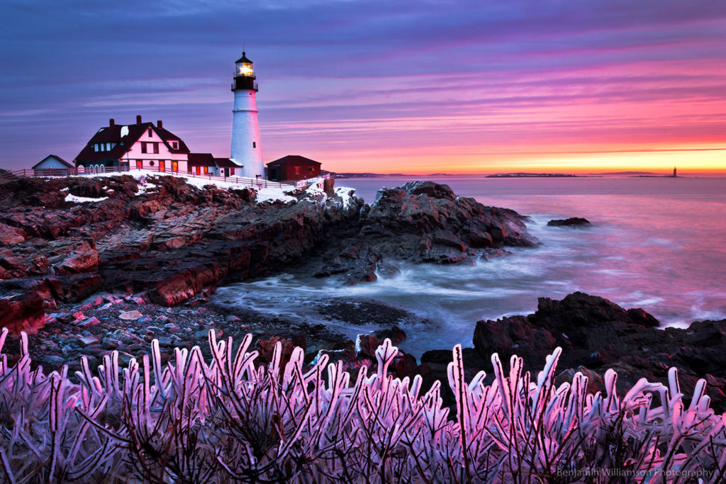 'Wicked Garden' - Portland Head Light, Cape Elizabeth, Maine